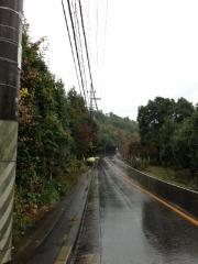 雨の中、高鼻川で川歩き_e0008880_0513240.jpg