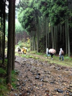 雨の中、高鼻川で川歩き_e0008880_0545736.jpg