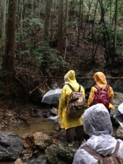 雨の中、高鼻川で川歩き_e0008880_110127.jpg