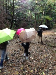 雨の中、高鼻川で川歩き_e0008880_115664.jpg