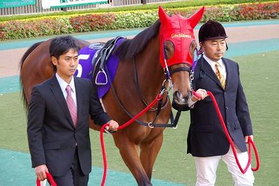 2012年度JRA賞発表、年度代表馬はジェンティルドンナ_b0015386_2332192.jpg