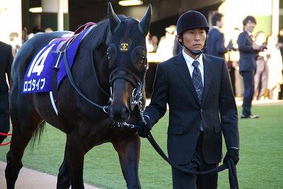 2012年度JRA賞発表、年度代表馬はジェンティルドンナ_b0015386_233451.jpg