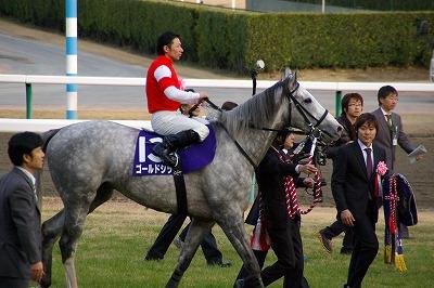 2012年度JRA賞発表、年度代表馬はジェンティルドンナ_b0015386_2365270.jpg