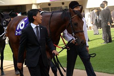 2012年度JRA賞発表、年度代表馬はジェンティルドンナ_b0015386_2381417.jpg
