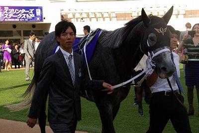 2012年度JRA賞発表、年度代表馬はジェンティルドンナ_b0015386_238235.jpg