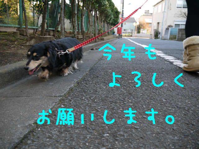 f0218911_0445340.jpg