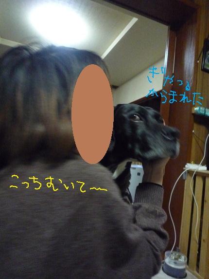 a0109914_0424116.jpg