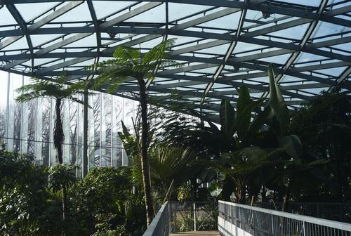 植物園の写真について_b0212922_1610292.jpg