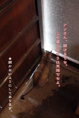 b0199526_137778.jpg