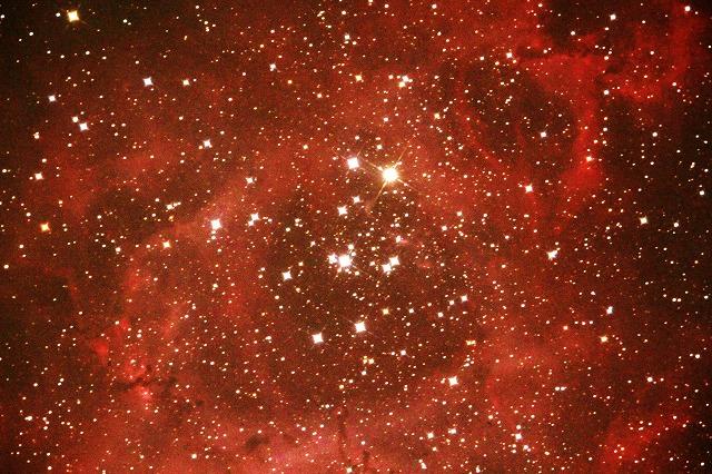 冬の美しき星ぼし・・・_b0100253_9251011.jpg