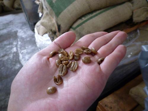大人の社会見学!LION COFFEE FACTORY 工場見学ツアーに参加@ハワイでごはん2012秋_c0152767_2251358.jpg