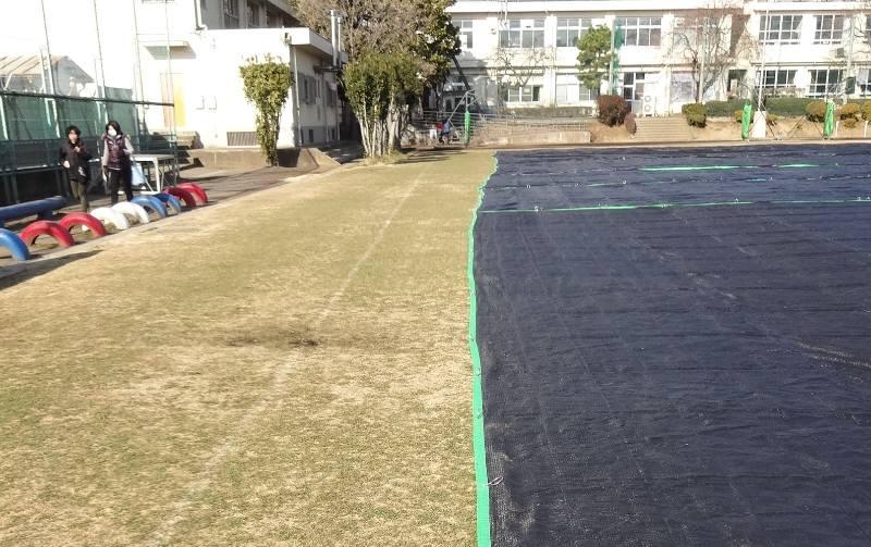 13小校庭芝生シート外し_f0059673_002996.jpg