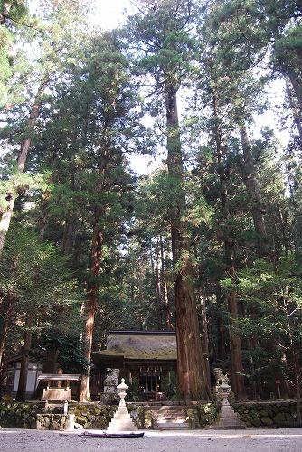 室生寺・龍穴神社_c0124100_1195540.jpg