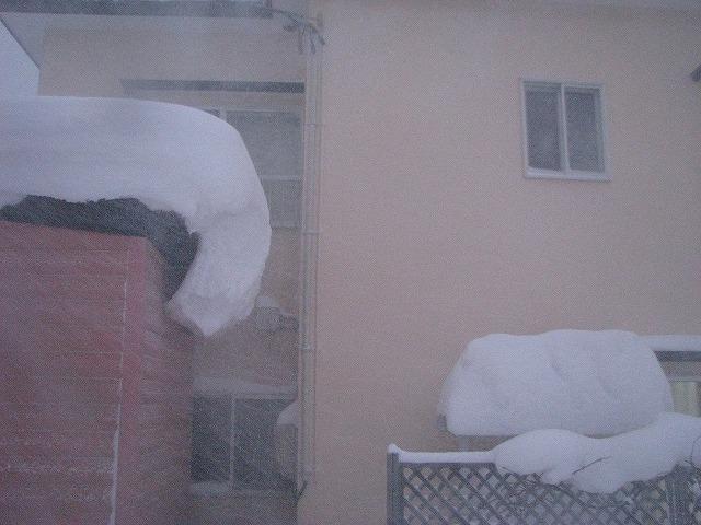 ◆ また雪ネタですが・・・ ◆_c0078202_17365344.jpg