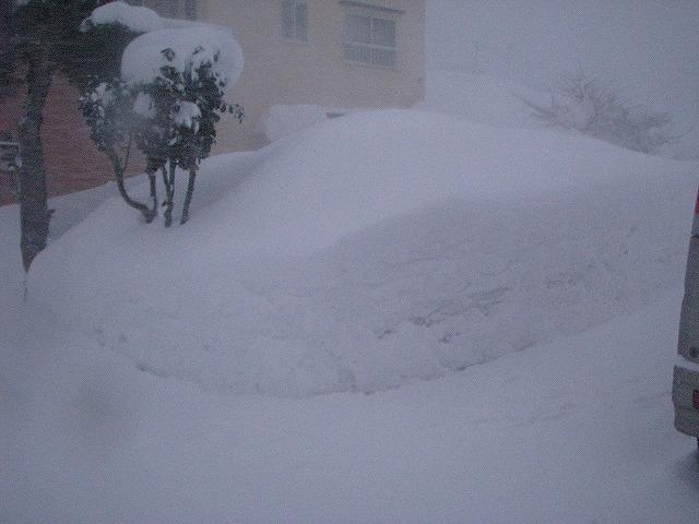 ◆ また雪ネタですが・・・ ◆_c0078202_17375689.jpg
