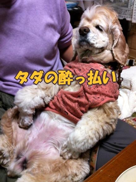b0067012_0445396.jpg