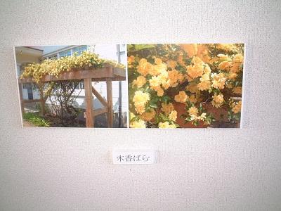記念館紹介 ~ リデル、ライト両女史記念館 ~_b0228113_1550179.jpg