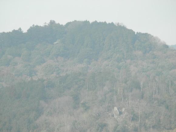 2013年「greengreenvillage日田」開拓日記です☆_a0125419_10505995.jpg