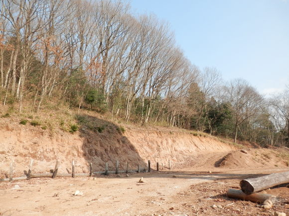 2013年「greengreenvillage日田」開拓日記です☆_a0125419_1163654.jpg
