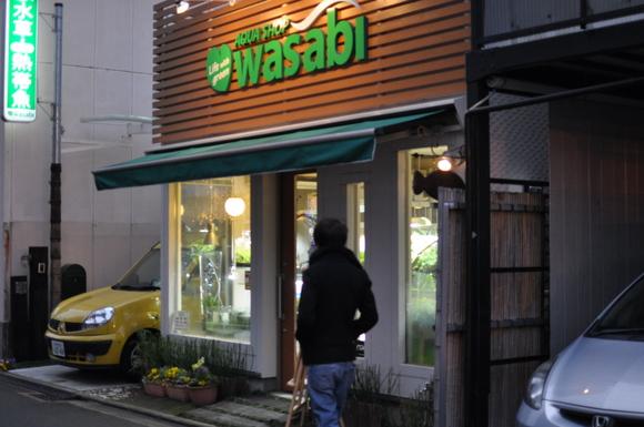 水草を買いに_a0262622_2328395.jpg