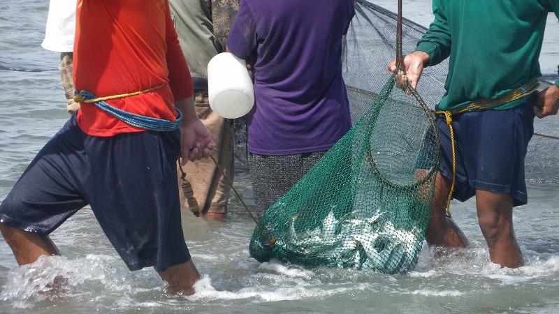 ロハスで地引網漁_f0210164_156454.jpg