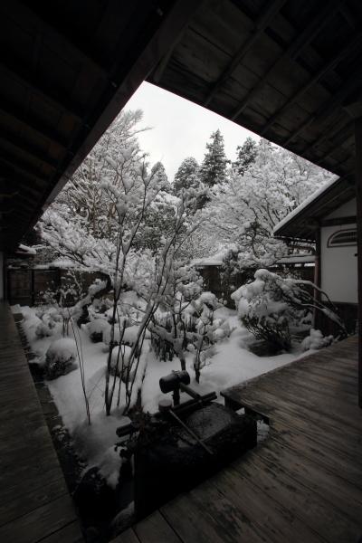 宝泉院_e0051888_23144346.jpg