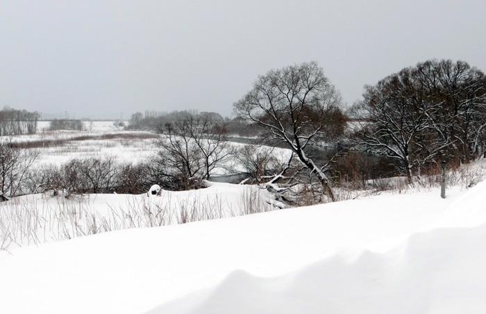 岩木川の雪景色など、ちょこっと_a0136293_1624682.jpg