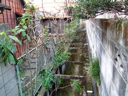 水田のなかった谷戸。宿湿化味の谷の川跡を辿る。_c0163001_233762.jpg