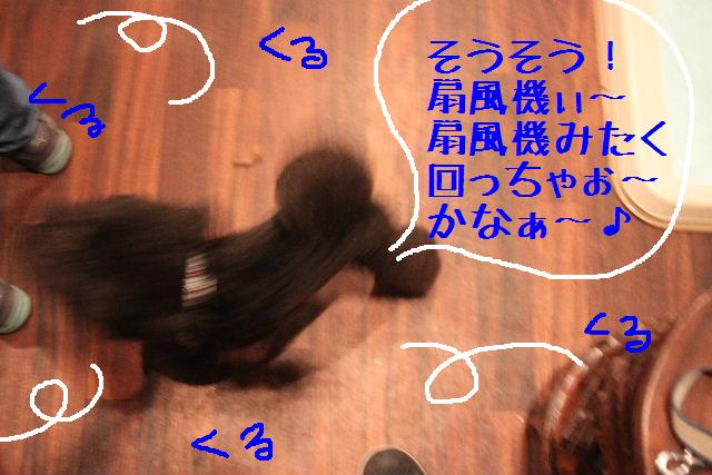 b0130018_2234914.jpg