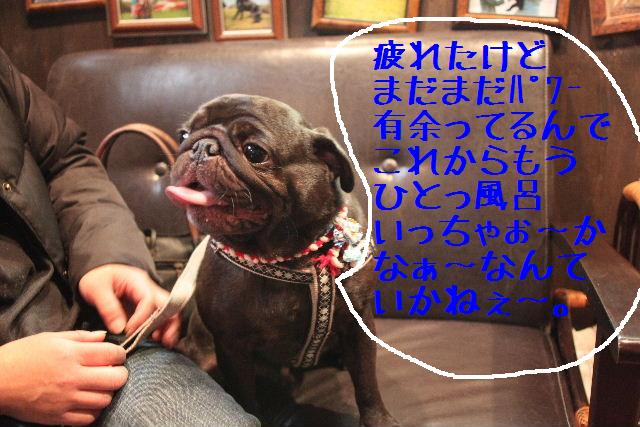b0130018_2238094.jpg