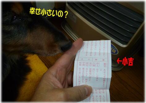 c0058727_1647878.jpg