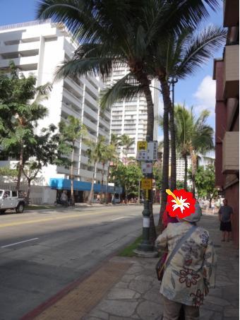 2012年11月ハワイ親連れ旅行~その17~_d0219834_21465574.jpg