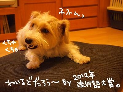 b0092580_410599.jpg