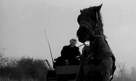 『ニーチェの馬 - The Turin Horse 』 A Torinói ló を観る : ベン ...