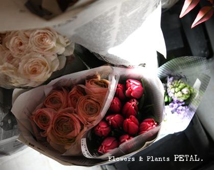 明日の花たち_d0157716_2025313.jpg
