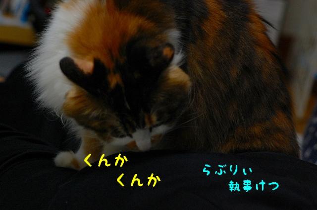 c0181639_2321488.jpg