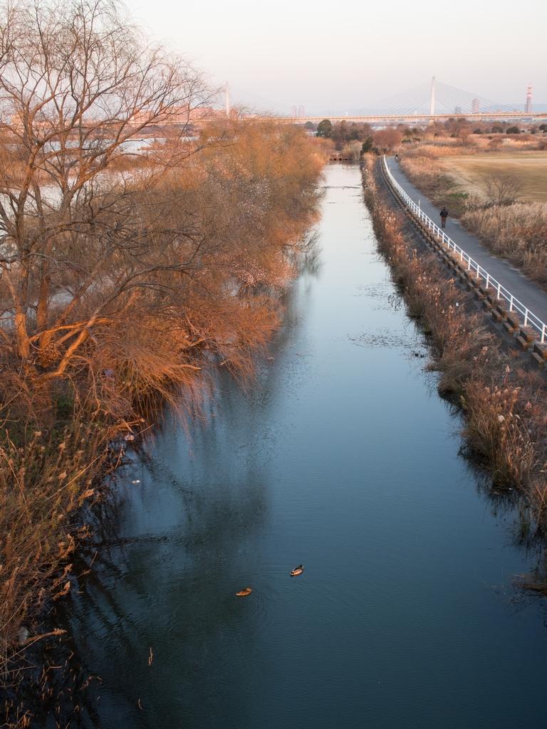 「赤川鉄橋 2013」_a0133692_20352253.jpg
