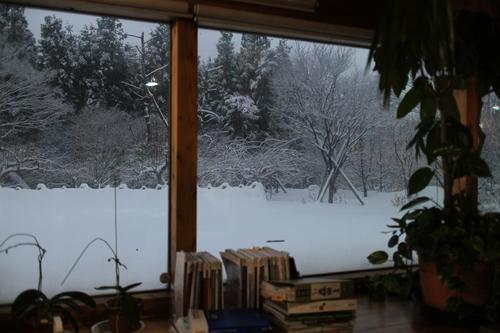 雪が降り続く_e0054299_1644326.jpg
