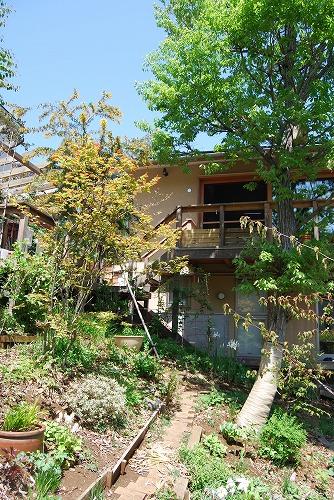 2012年の庭…_c0124100_14102160.jpg