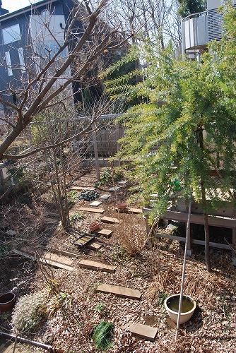 2012年の庭…_c0124100_1410448.jpg