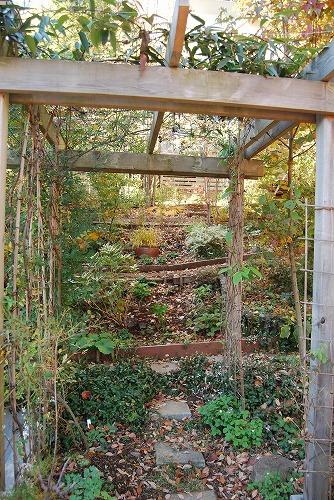 2012年の庭…_c0124100_14112646.jpg