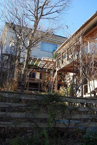 2012年の庭…_c0124100_14113499.jpg