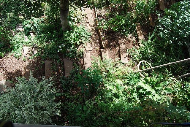 2012年の庭…_c0124100_1411977.jpg