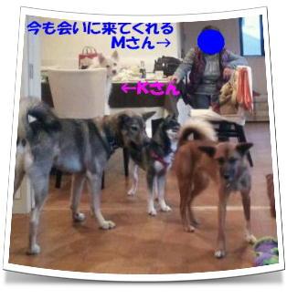 b0207320_4525212.jpg