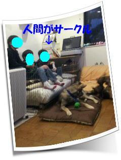 b0207320_4571325.jpg