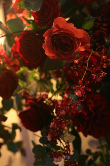 ワインレッドの冬の装花 シェ松尾青山サロン様へ_a0042928_1711793.jpg