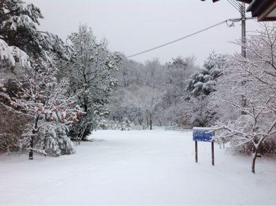 雪が降る…_e0179508_9251897.jpg