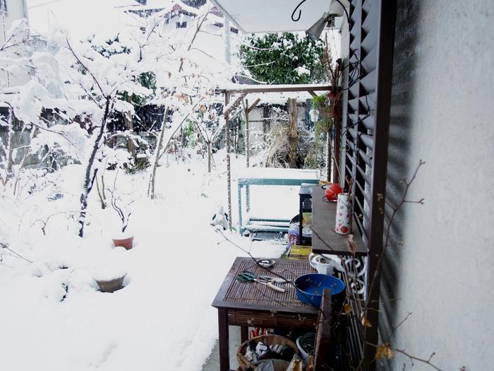 雪の日_e0276411_20405987.jpg