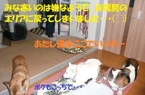 f0121712_16505195.jpg
