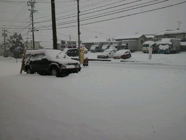 ゆき雪ユキ_a0257316_18543147.jpg